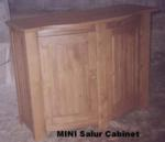 SalurCabinet MINI